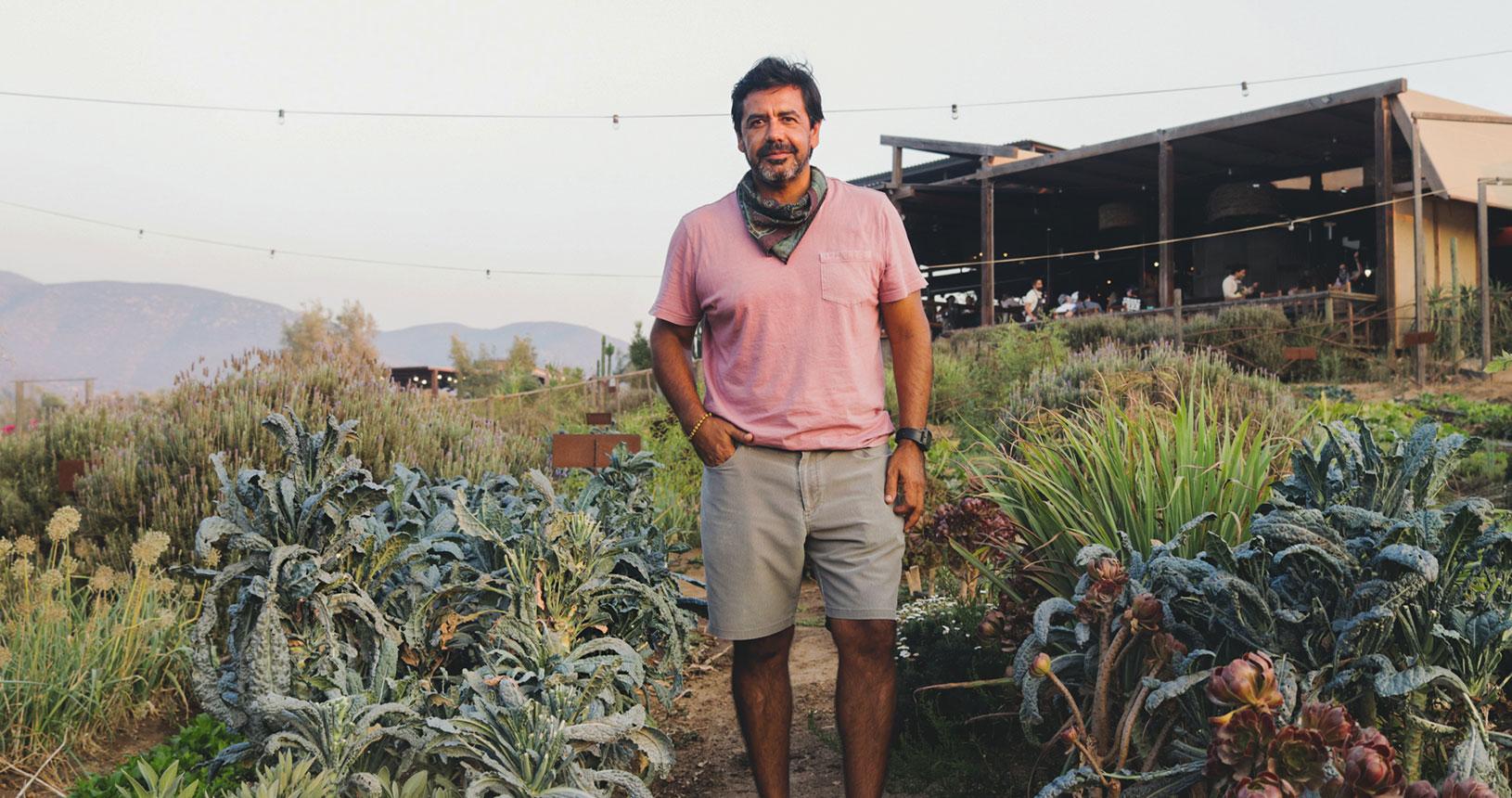 farm table tijuana